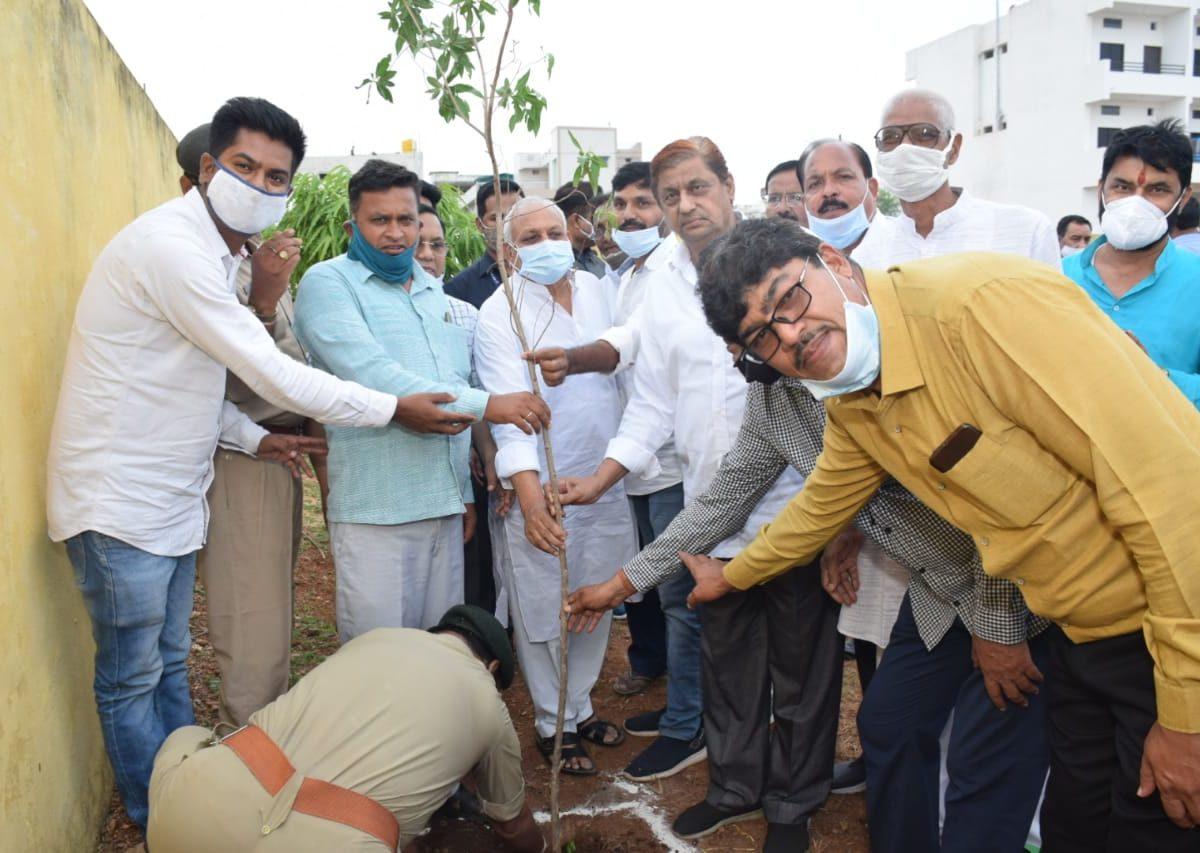 रायपुर : वन मंत्री श्री अकबर ने कवर्धा वनमंडल में किया पौधरोपण