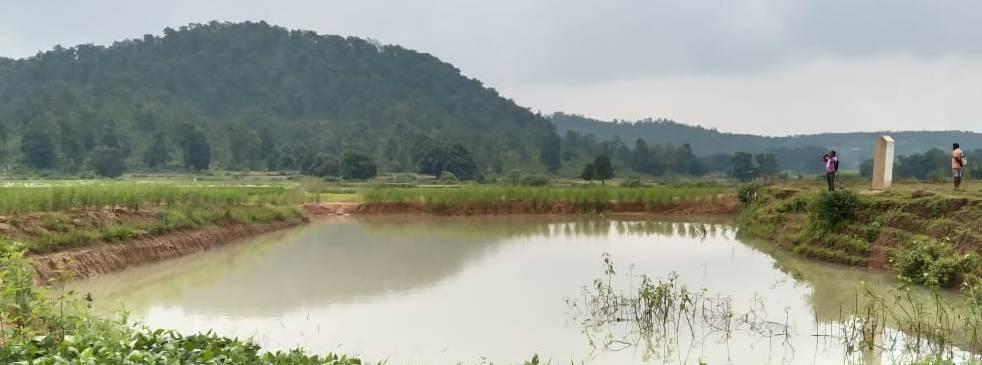 बलरामपुर: मनरेगा से फूलसाय के खेत में बनी डबरी, वर्षा जल संचयन कर गर्मीयों में भी कर रहे हैं खेती : सिंचाई सुविधा मिलने से दो एकड़ भूमि में खेती कर प्रतिमाह 15 से 20 हजार की कमाई करते हैं फूलसाय